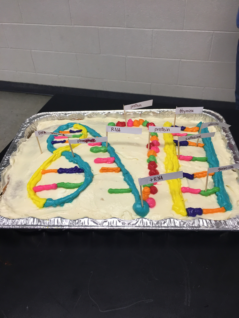 Cake shows DNA strand