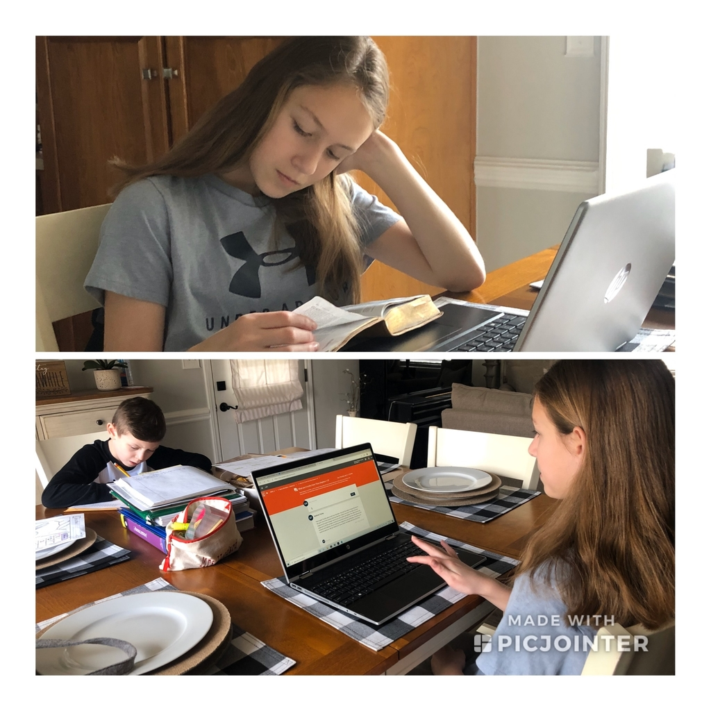Siblings completing on-line classes.